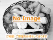 野菜NoImageB