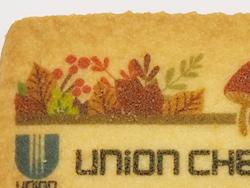 2:お菓子ノベルティ 可食インクジェットインクのプリントクッキー(秋の紅葉、どんぐり、リスのデザイン)のアップ