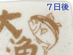 はんぺんに焼印代替用の「水分に比較的強い可食インク+前処理剤(茶)」を用いて可食プリンターで印刷7日後